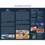 <p>Folleto triptico interior - Ian Fish<p>